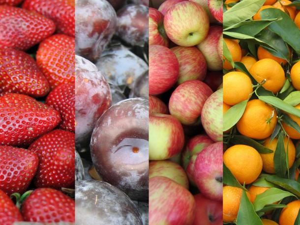 seasonality_chart_fruit_4